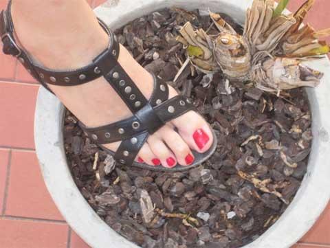 Schöne Füße - Nagellack Rot